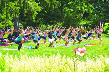 Yoga Page 1