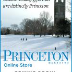 Princeton Online Store color web