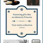 Princeton Online Store color web large